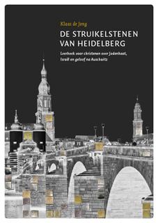 Cover De Struikelstenen van Heidelberg.