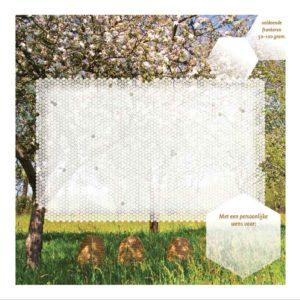 Het mysterie van de honingbij - Klaas de Jong - enveloppe